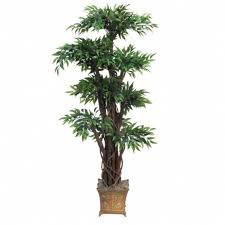 4 foot tropical ruscus topiary tree potted overstock 1878