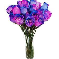 multicolored roses wholesale rainbow roses bulk wedding flowers