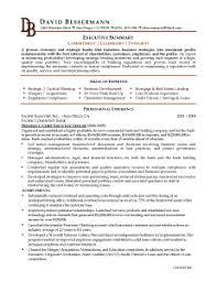 computer proficiency microsoft office resume templates 017 free