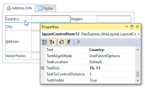 devexpress layout control video layout item s settings form layout managers winforms controls
