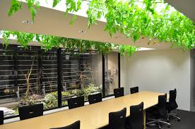 these office workers share their cubicles with an urban farm