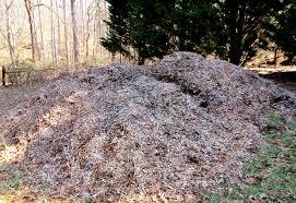 arborist wood chips mulch growing a greener world