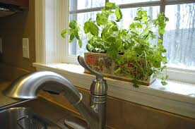 kitchen herb garden ideas kitchen herb garden ideas archives living rich on lessliving