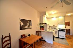One Bedroom Apartments Nyc by Nice Modern New York Studio Apartments With Lighting Roof And