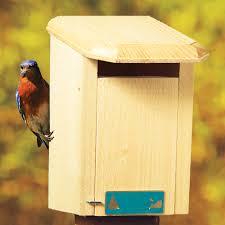 platform bird feeder selection backyard chirper with regard to