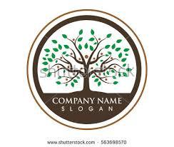 family tree symbol icon logo design stock vector 563698570