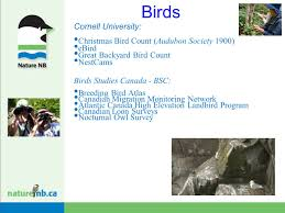 citizen science definition citizen science is defined as the