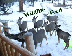 wildlife supplies buck moore feed and pet supply llc