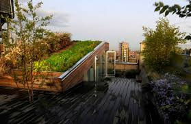 remembering visionary landscape architect diana balmori through