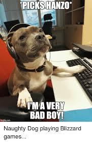 Bad Dog Meme - 25 best memes about bad boys dogs boy boys bad dog and