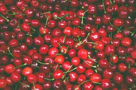 president u0027s day cherry pie recipe for kids