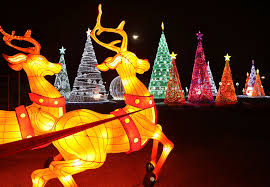 magic winter lights dallas the top places to see christmas lights in d fw guidelive
