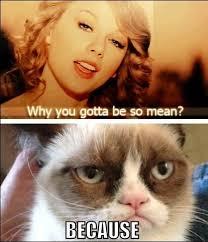 Meme Mean - why you gotta be so mean cat meme cat planet cat planet