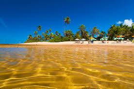 beachfront real estate in dominican republic and brazil
