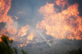 Wildfire Fighting Canada by Wildfire Fighting U0027a Little Bit Of An Appetite For Danger U0027