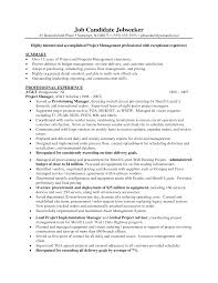 Project Manager Resume Template Word Pmo Resume Sample