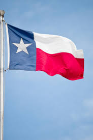 Names For The Us Flag Texas Independence Day In The United States