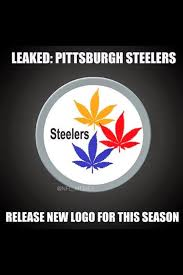 Steelers Meme - 22 meme internet leaked pittsburgh steelers release new logo for
