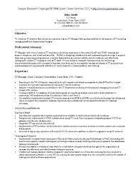 It Manager Resume Examples by Download It Resume Sample Haadyaooverbayresort Com