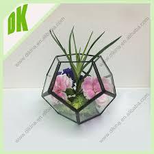Wall Mounted Glass Flower Vases Rectangular Glass Vase For Flower Arrangement For Plants U0026