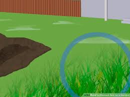4 ways to prepare soil for a garden wikihow