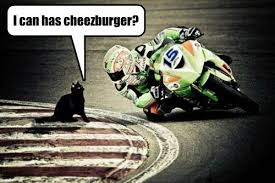 Funny Motorcycle Meme - lolcats motorcycle lol at funny cat memes funny cat pictures