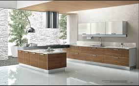 Fancy Modern Kitchen Image 32 Concerning Remodel Inspiration