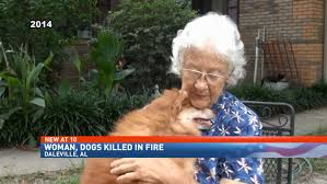 75 year old woman pic 75 year old woman killed while trying to rescue sheltered animals