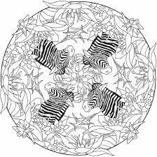 235 mandalas images coloring books drawings