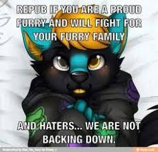 Furry Meme - furries meme google search furry art pinterest meme