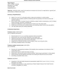 Post Resume Online Stunning Submitting A Resume Online Pictures Simple Resume