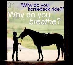 Friend I M Gonna Tell - this is what im gonna say wen my friends ask me why i horse back