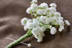 Baby Breath Baby U0027s Breath Wedding Trend Winter White Flowers How To Wire