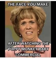 Hands On Face Meme - these puppy monkey baby memes try to make sense of super bowl 50 s