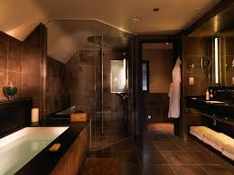 showerroom dark brown tiles wall themes shower room combined by glazed shower
