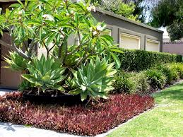 homelife 10 best plants for vertical gardens artificial grass back garden completed with a stone border giving