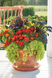 Flower Pot Fall Container Gardening Ideas Southern Living