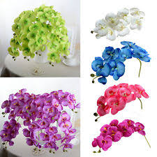 Orchid Decorations For Weddings Silk Orchids Floral Decor Ebay
