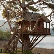 three house the treehouse at the lodge on loch goil