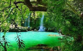 waterfall calmness emerald falling serenity green trees pond