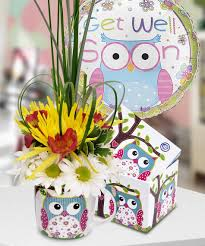 get well soon gifts hoots and hugs brighten someone s day with this adorable owl