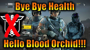 siege hello bye bye health hello blood orchid rainbow six siege w special