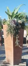 497 best garden ideas succulents images on pinterest