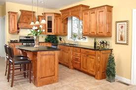 amish built kitchen cabinets kitchen cabinets amish amicidellamusica info
