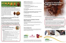 bed bug control canada bedding bed linen