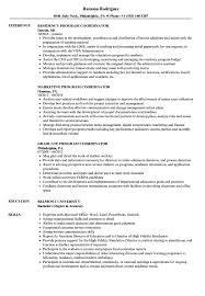 resume format for engineering students ecers assessment form coordinator program resume sles velvet jobs