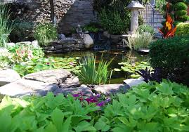 ecosystems pond contractor palisades park nj bergen county pond