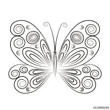 vector illustration butterfly isolated on white
