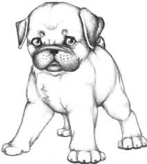 pug coloring pages print draw dog coloring