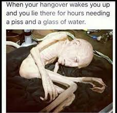 Hung Over Meme - 25 hangover memes that are way too true sayingimages com